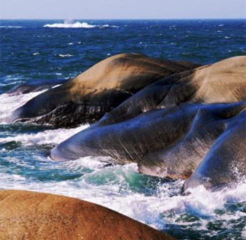 Svaberg i nærområdet med bølger som slår mot land